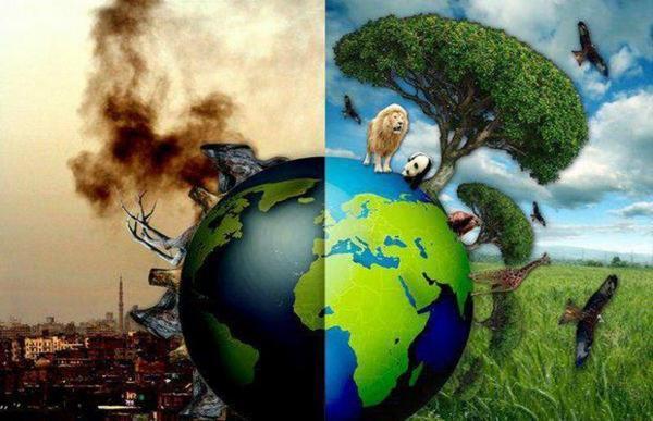 natura e ambiente