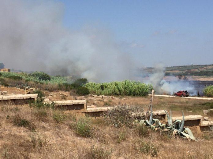 Parco di Selinunte - incendio