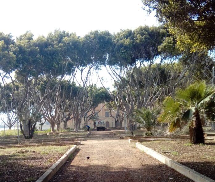 area verde - foro italico